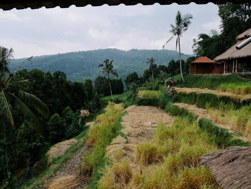 Bali-489