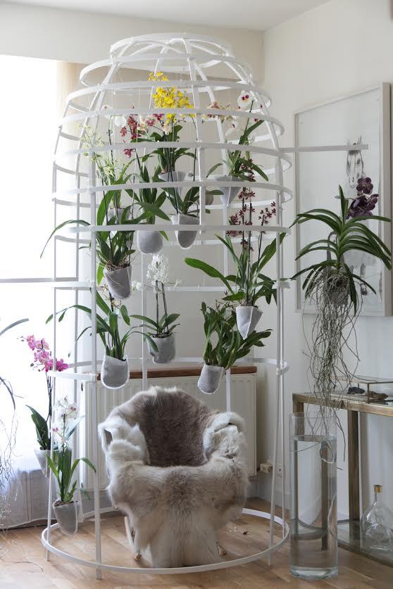 stylisme orchidées