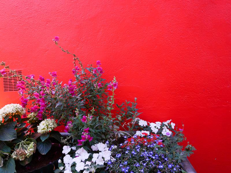 trentemoult-lili in wonderland-9