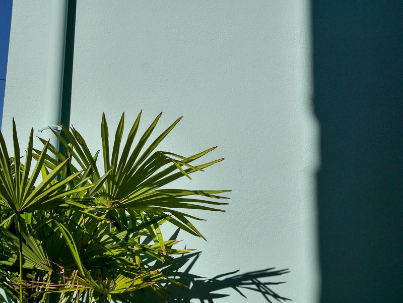 lili inwonderland-10