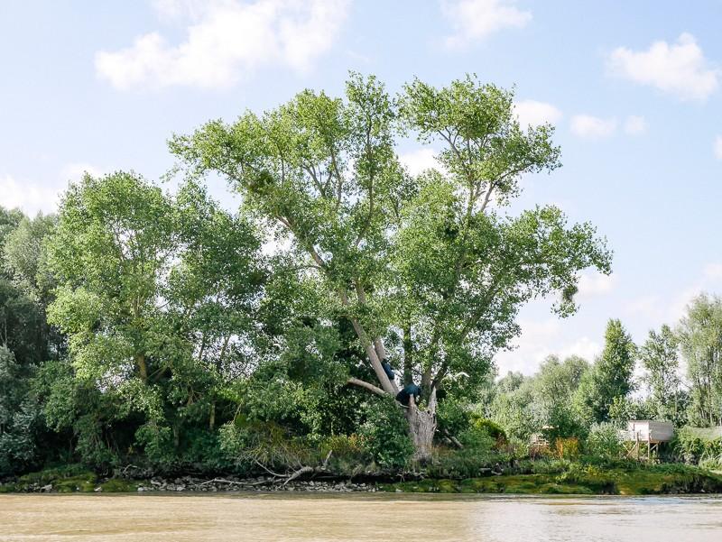 estuaire-lili-in-wonderland-2