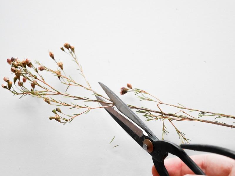 diy-herbier-lili-in-wonderland-5