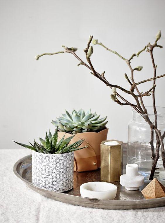 plantes-decorer-interieur-lili-in-wonderland-4