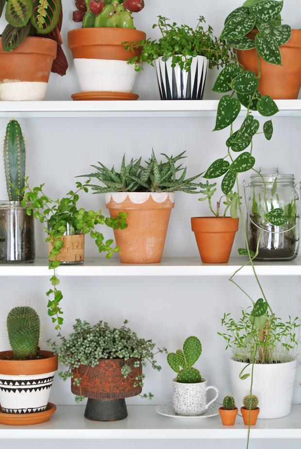 plantes-pots-decores-diy-lili-in-wonderland