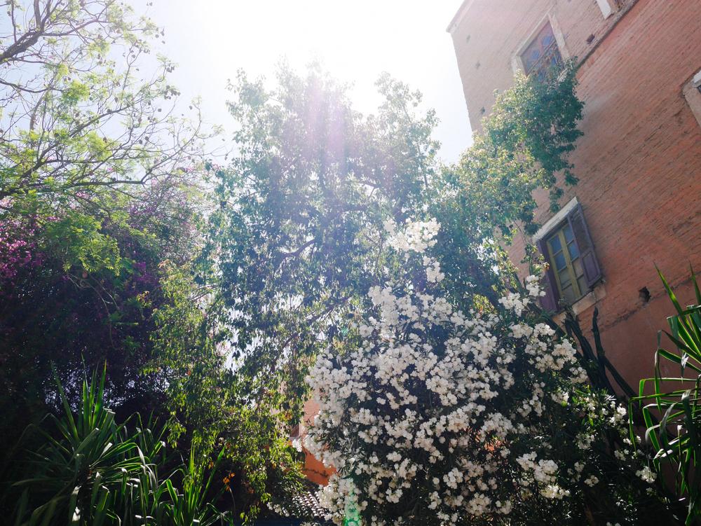 week-end-marrakech-liliinwonderland-116
