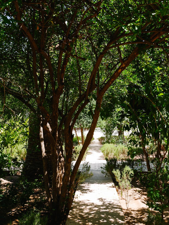 week-end-marrakech-liliinwonderland-123