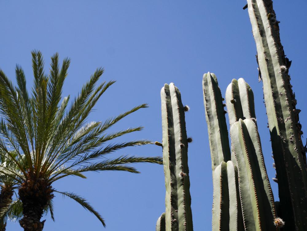 week-end-marrakech-liliinwonderland-17