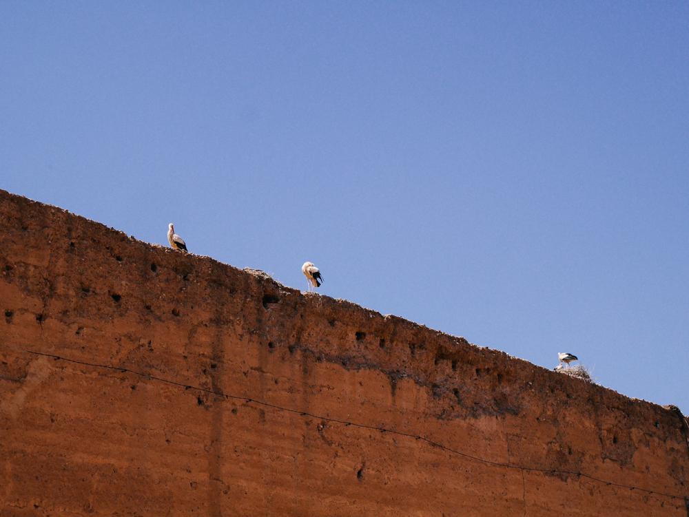 week-end-marrakech-liliinwonderland-67