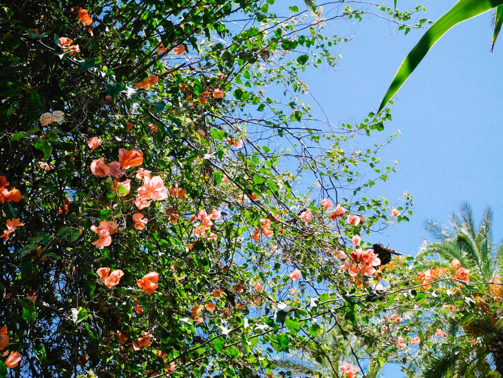 week-end-marrakech-liliinwonderland-91