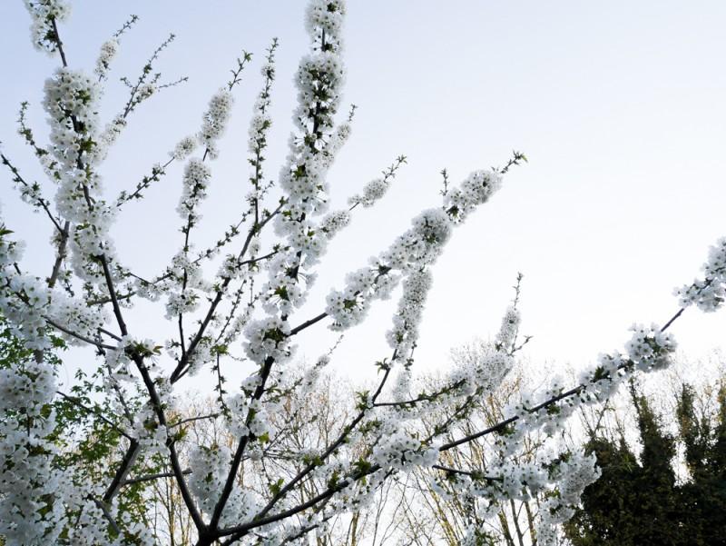reportage-faustine-crochet-liliinwonderland-28