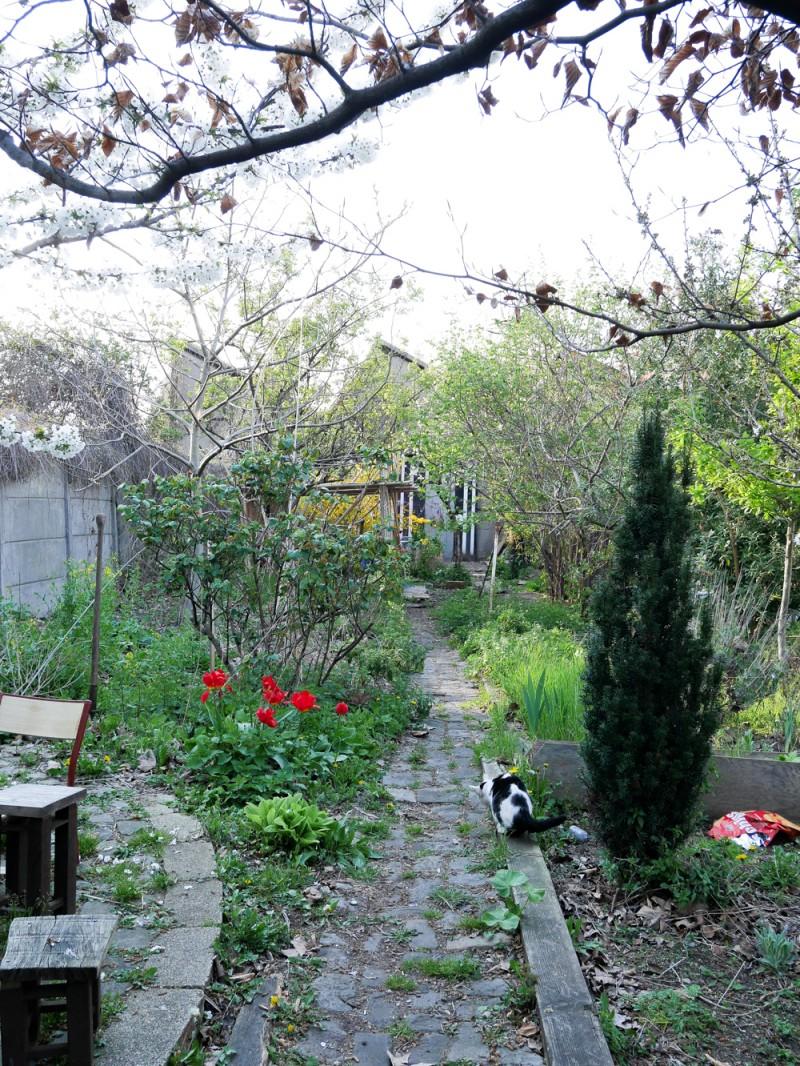 reportage-faustine-crochet-liliinwonderland-30