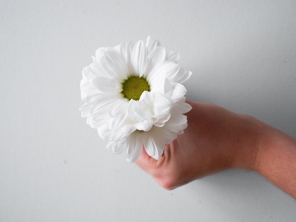 diy-couronne-fleurs-lili-in-wonderland-20