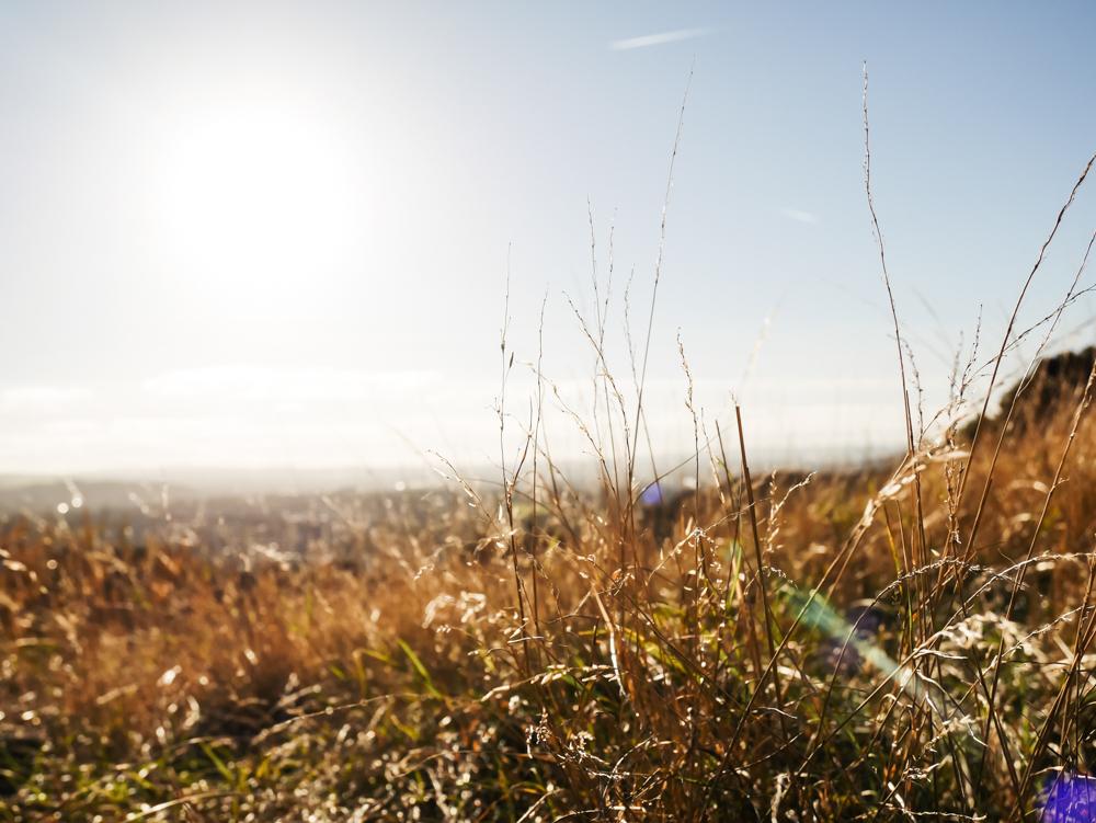 road-tri-ecosse-edimbourg-loch-lomond-lili-in-wonderland-41