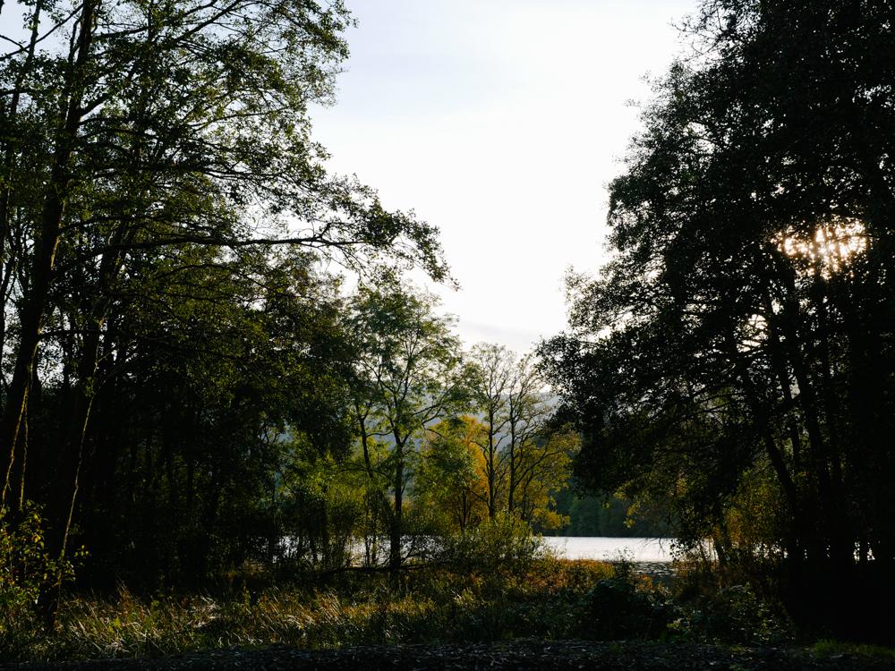 road-tri-ecosse-edimbourg-loch-lomond-lili-in-wonderland-60