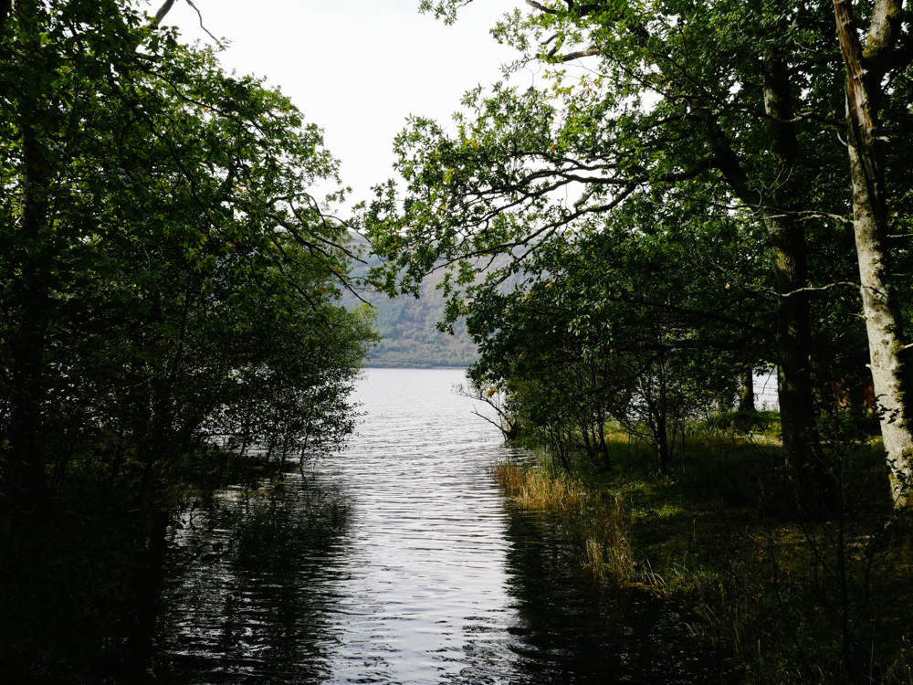 road-tri-ecosse-edimbourg-loch-lomond-lili-in-wonderland-69