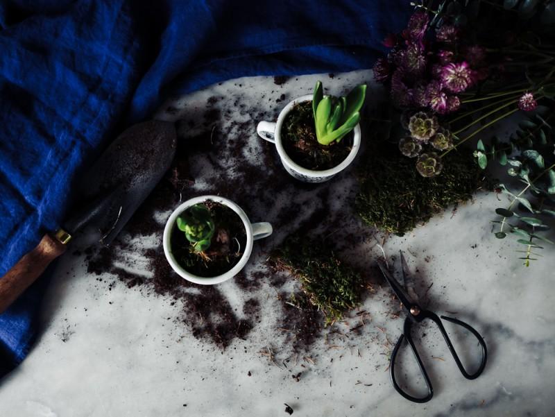 DIY mugs en émail personnalisés pour jacinthes