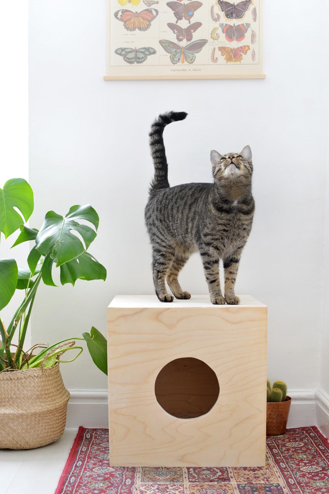 Griffoir Chat Fait Maison 5 diy pour les chats - lili in wonderland