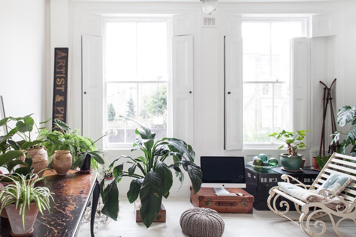 Une maison bohème avec pleins de plantes - Lili in wonderland