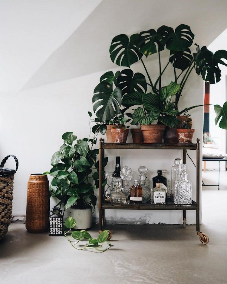 http://liliinwonderland.fr/wp-content/uploads/2018/07/appartement-interieur-plantes-vintage-liliinwonderland-3.jpg