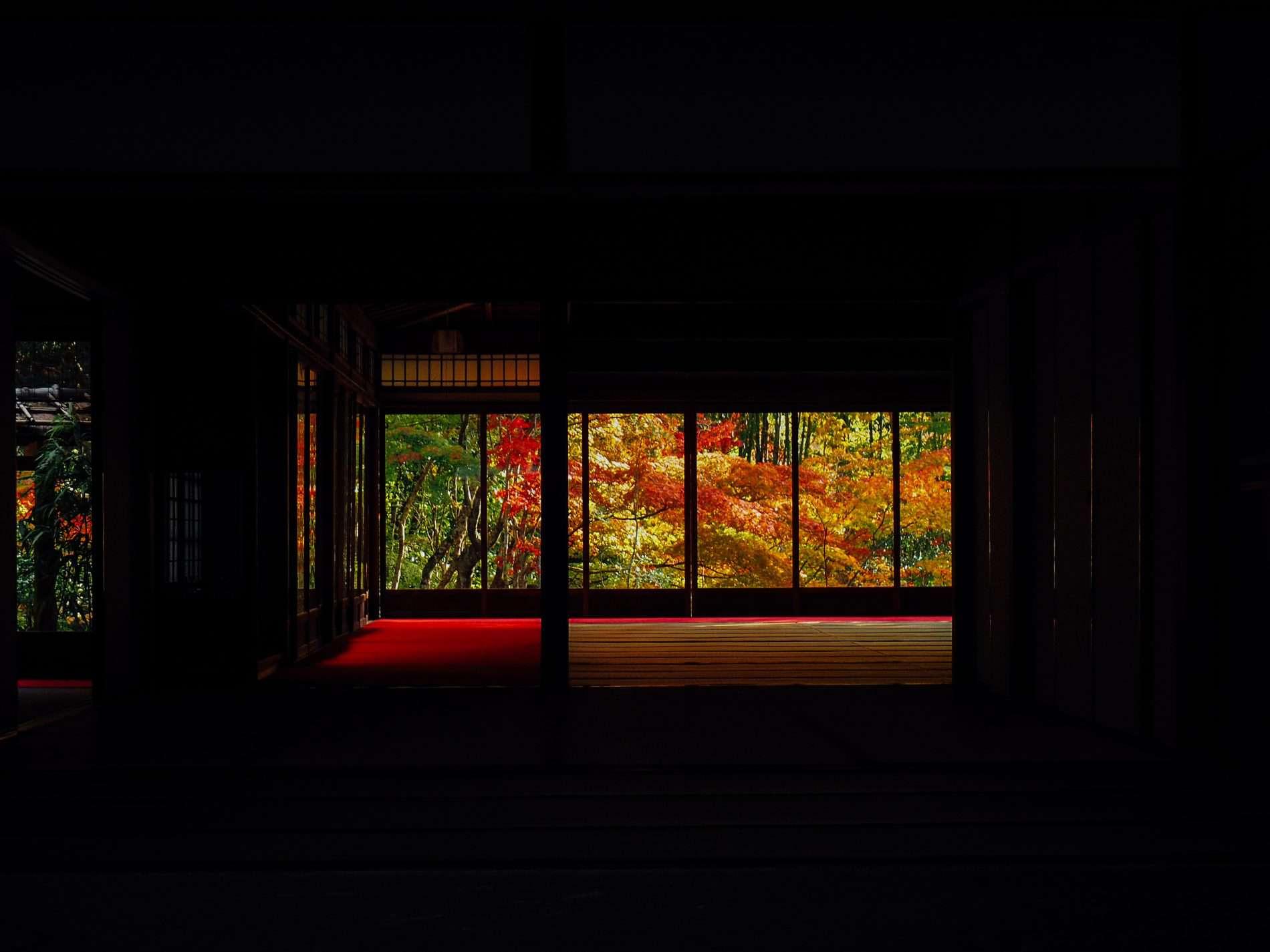 voyage kyoto blog automne japon tendu-an temple