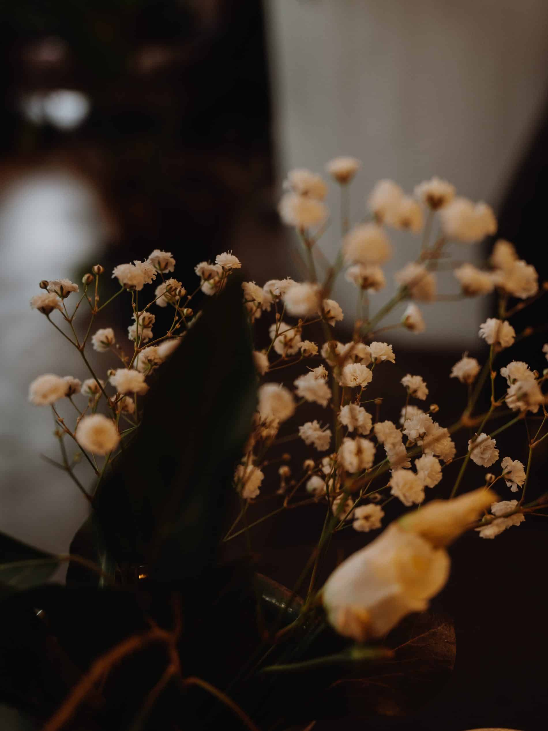 week end visiter Dusseldorf cityguide blog lili in wonderland