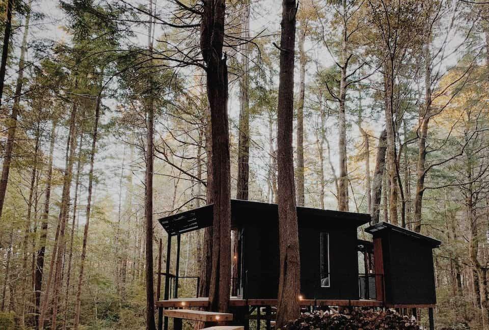 cabane en bois noir forêt Elk Retreat Forest blog deco lifestyle et voyage Lili in Wonderland