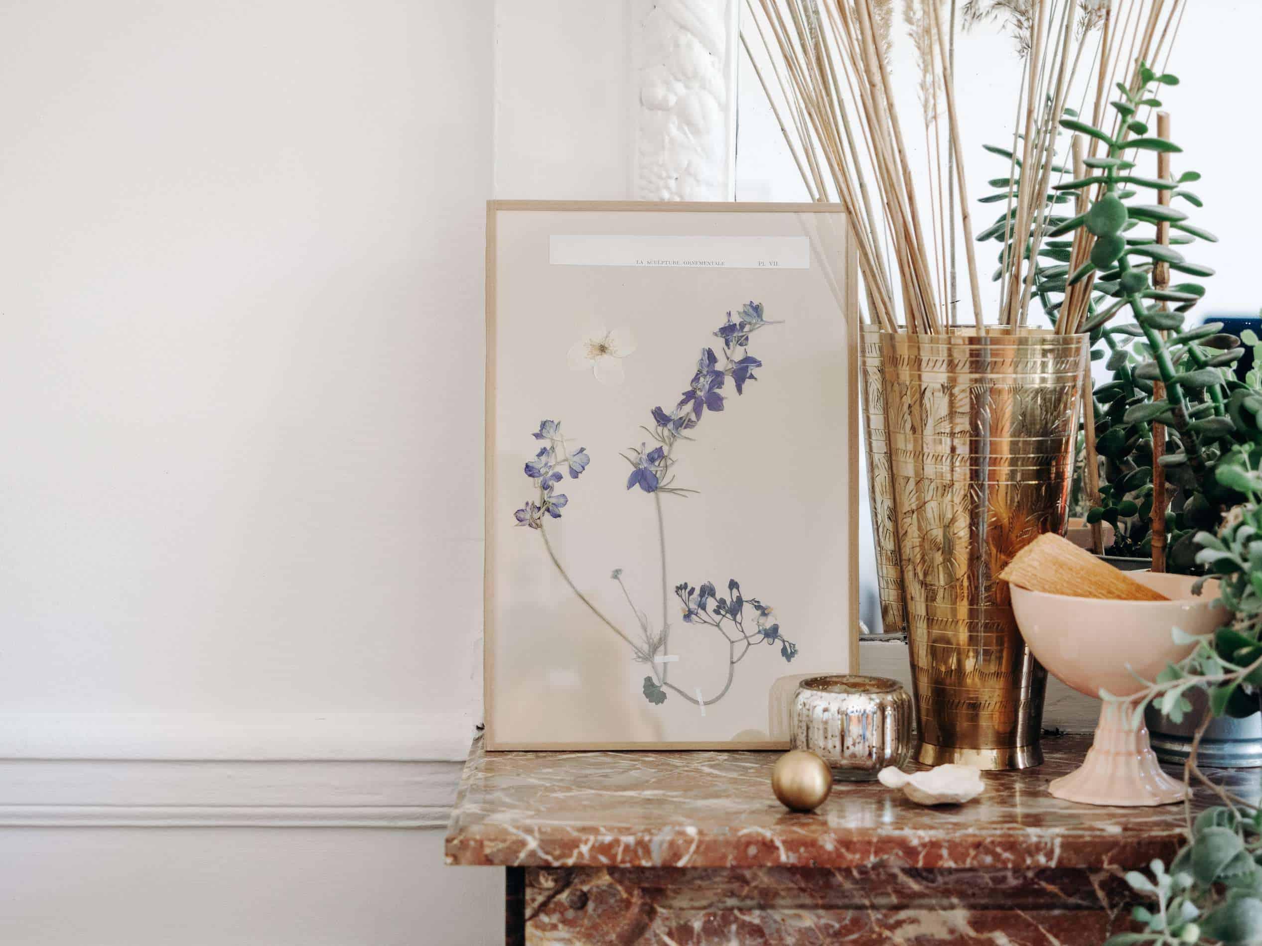 habituari herbier décoration slow living